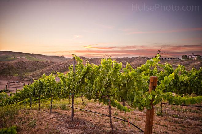 wineries1j